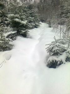 Lunta on aukeilla paikoilla jo riittävästi.