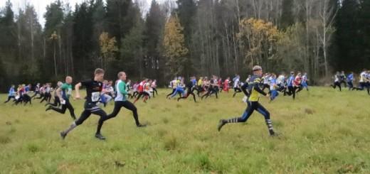 Halikko_lahto2012