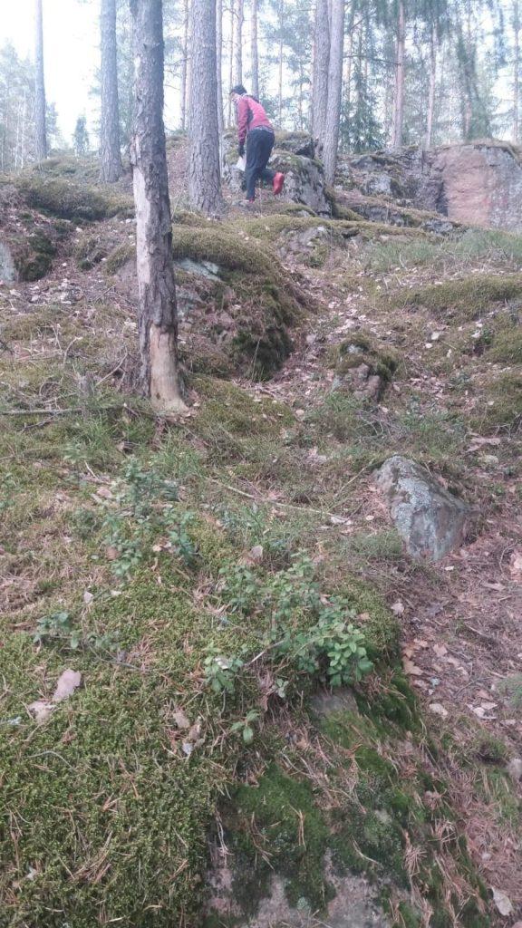 Kuva, joka sisältää kohteen ruoho, ulko, puu, seisominenKuvaus luotu automaattisesti
